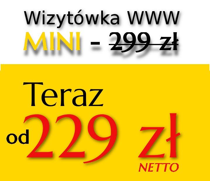 https://www.kraus-system.pl/wp-content/uploads/2018/11/wizytówka-MINIod.jpg